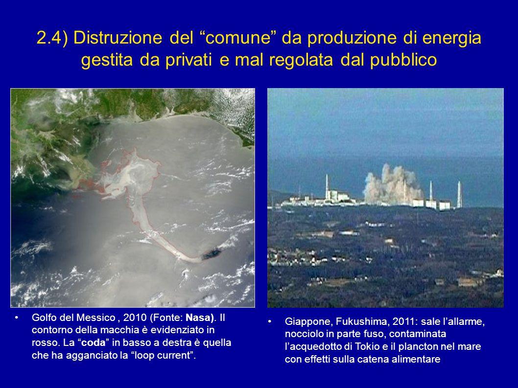 """2.4) Distruzione del """"comune"""" da produzione di energia gestita da privati e mal regolata dal pubblico Golfo del Messico, 2010 (Fonte: Nasa). Il contor"""