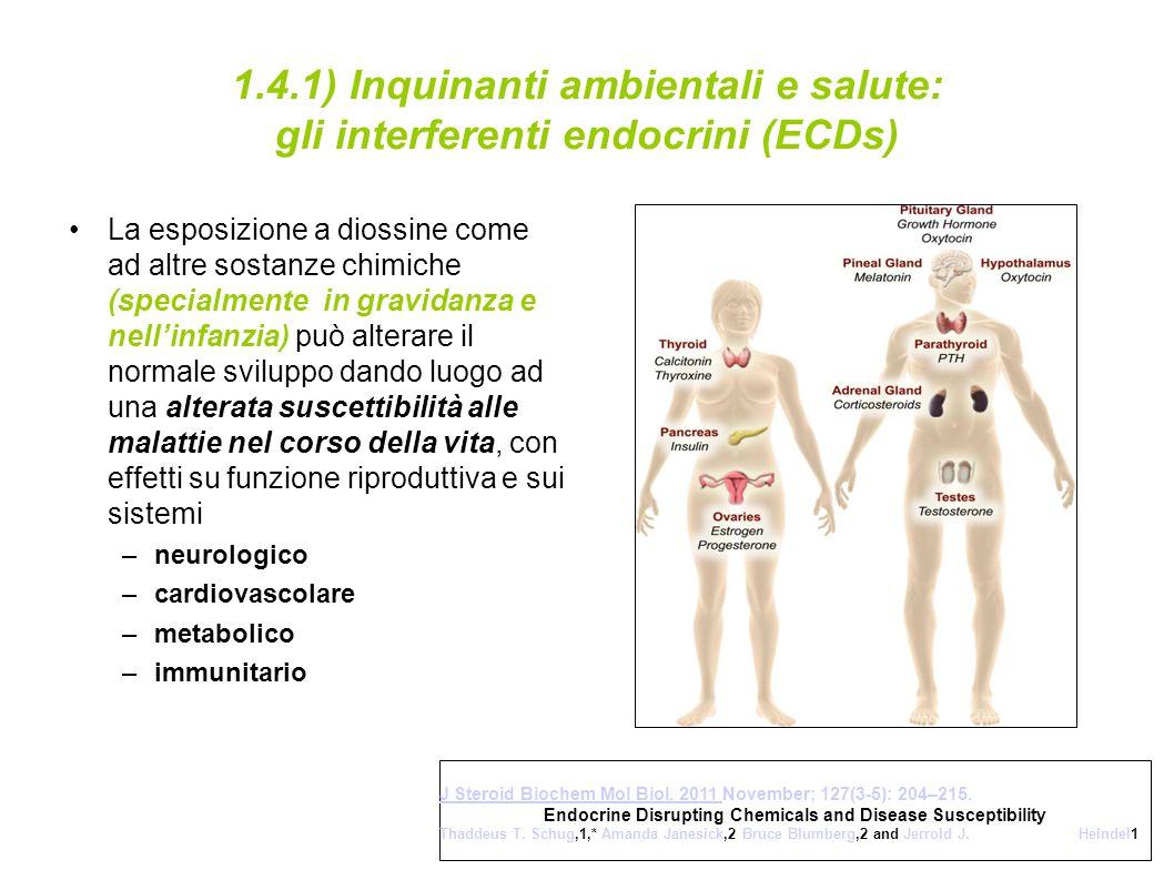 1.4.1) Inquinanti ambientali e salute: gli interferenti endocrini (ECDs) La esposizione a diossine come ad altre sostanze chimiche (specialmente in gravidanza e nell'infanzia) può alterare il normale sviluppo dando luogo ad una alterata suscettibilità alle malattie nel corso della vita, con effetti su funzione riproduttiva e sui sistemi –neurologico –cardiovascolare –metabolico –immunitario J Steroid Biochem Mol Biol.