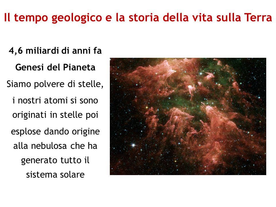Il tempo geologico e la storia della vita sulla Terra 4,6 miliardi di anni fa Genesi del Pianeta Siamo polvere di stelle, i nostri atomi si sono origi