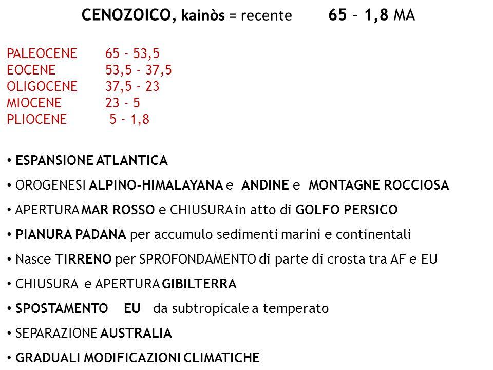 CENOZOICO, kainòs = recente 65 – 1,8 MA PALEOCENE65 - 53,5 EOCENE53,5 - 37,5 OLIGOCENE37,5 - 23 MIOCENE23 - 5 PLIOCENE 5 - 1,8 ESPANSIONE ATLANTICA OR