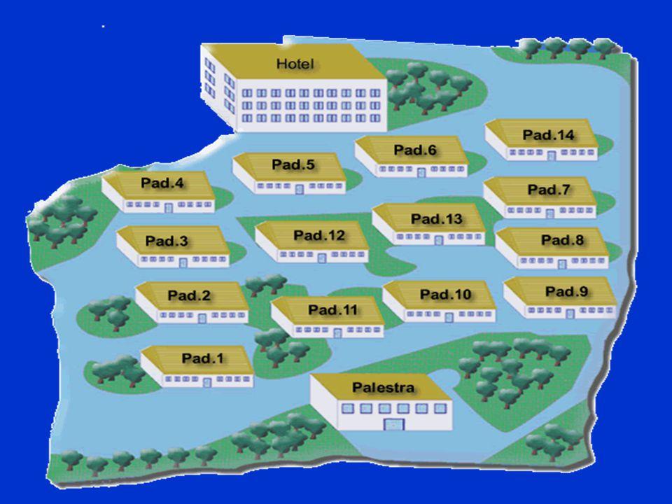 Formazione dei DG Nel 2004 sono state realizzate altre due edizioni del corso rivolte agli idonei alla nomina per DG iscritti nell'apposito elenco Nel 2004 sono state realizzate altre due edizioni del corso rivolte agli idonei alla nomina per DG iscritti nell'apposito elenco
