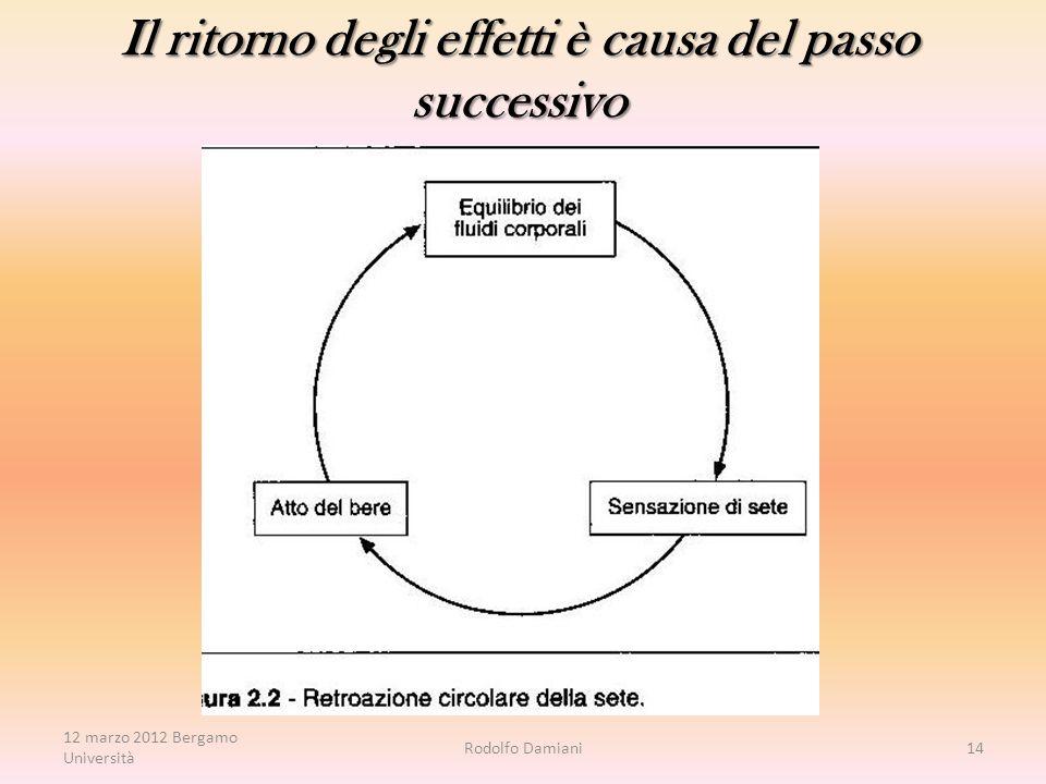 Rodolfo Damiani14 Il ritorno degli effetti è causa del passo successivo 12 marzo 2012 Bergamo Università