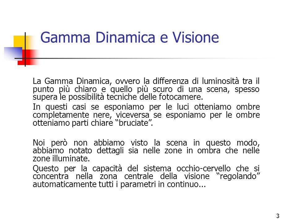 3 Gamma Dinamica e Visione La Gamma Dinamica, ovvero la differenza di luminosità tra il punto più chiaro e quello più scuro di una scena, spesso super