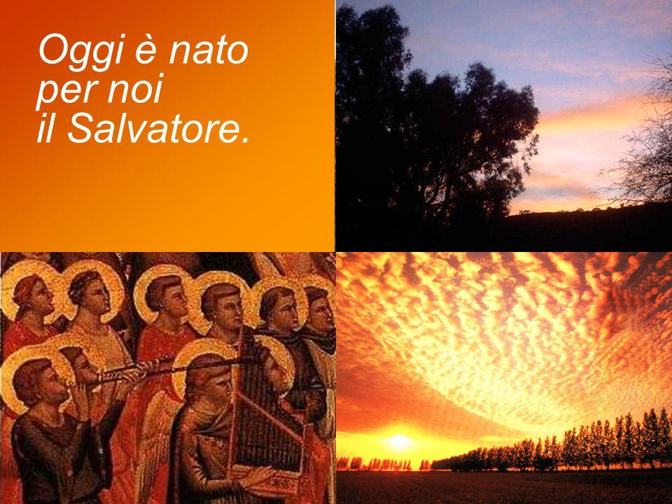 Annunziate di giorno in giorno la sua salvezza, in mezzo ai popoli raccontate la sua gloria, a tutte le nazioni dite i suoi prodigi.