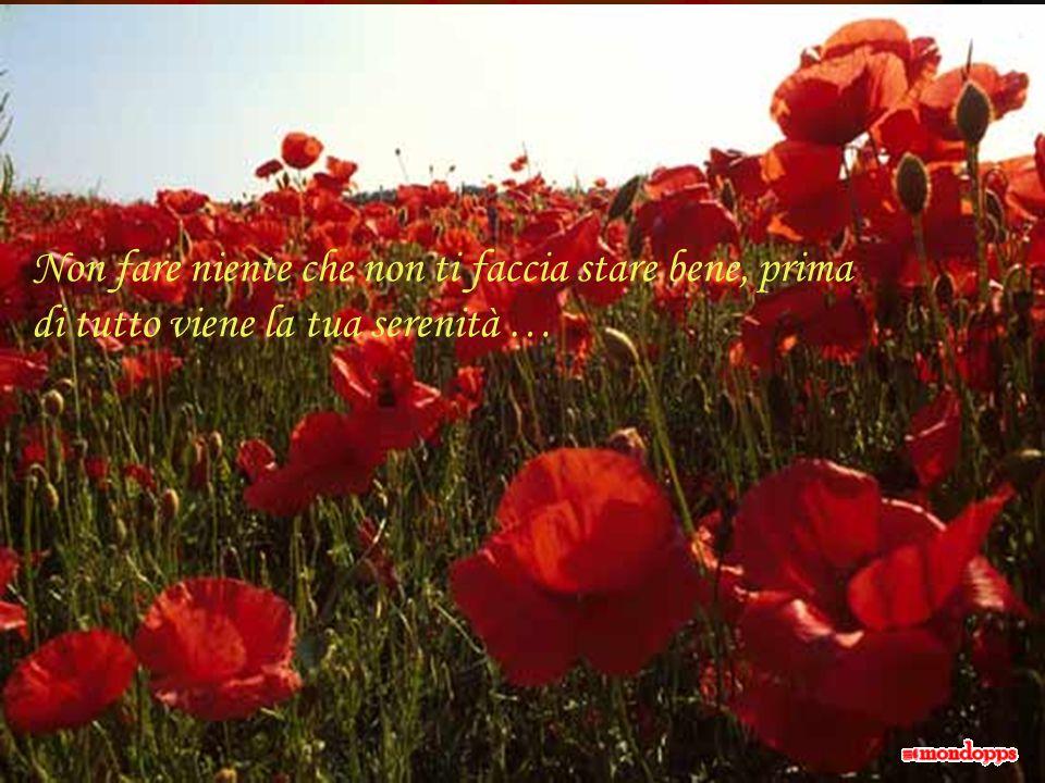 Nel prendere sonno, non sperare in un domani migliore, spera in una notte serena …