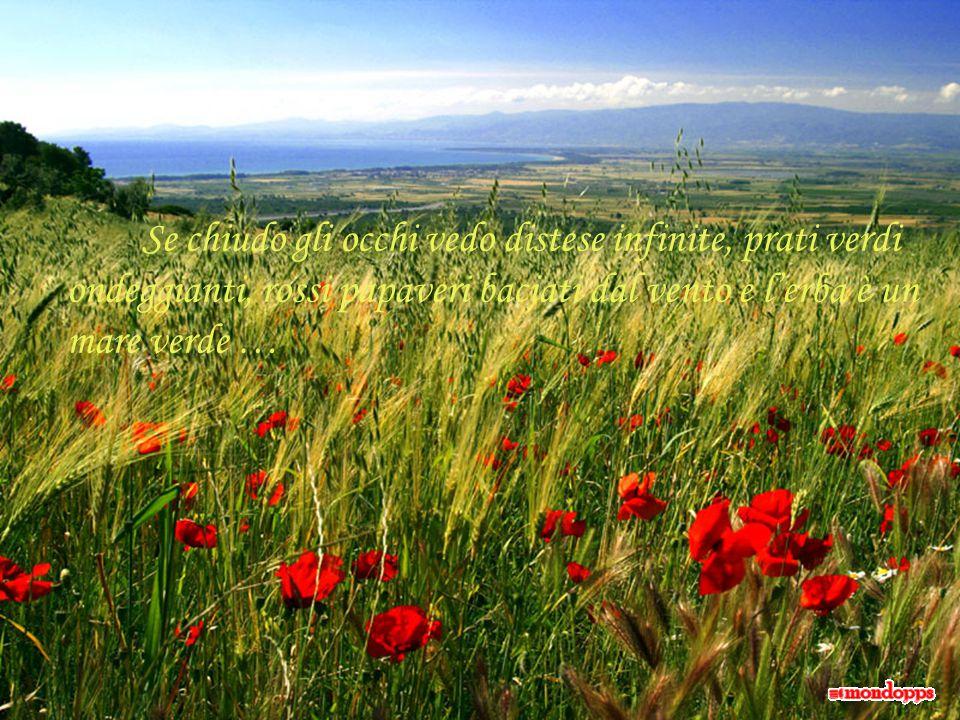 Non sono le parole che riempiono i nostri vuoti, ma gli affetti e le tenerezze di chi ci ama …