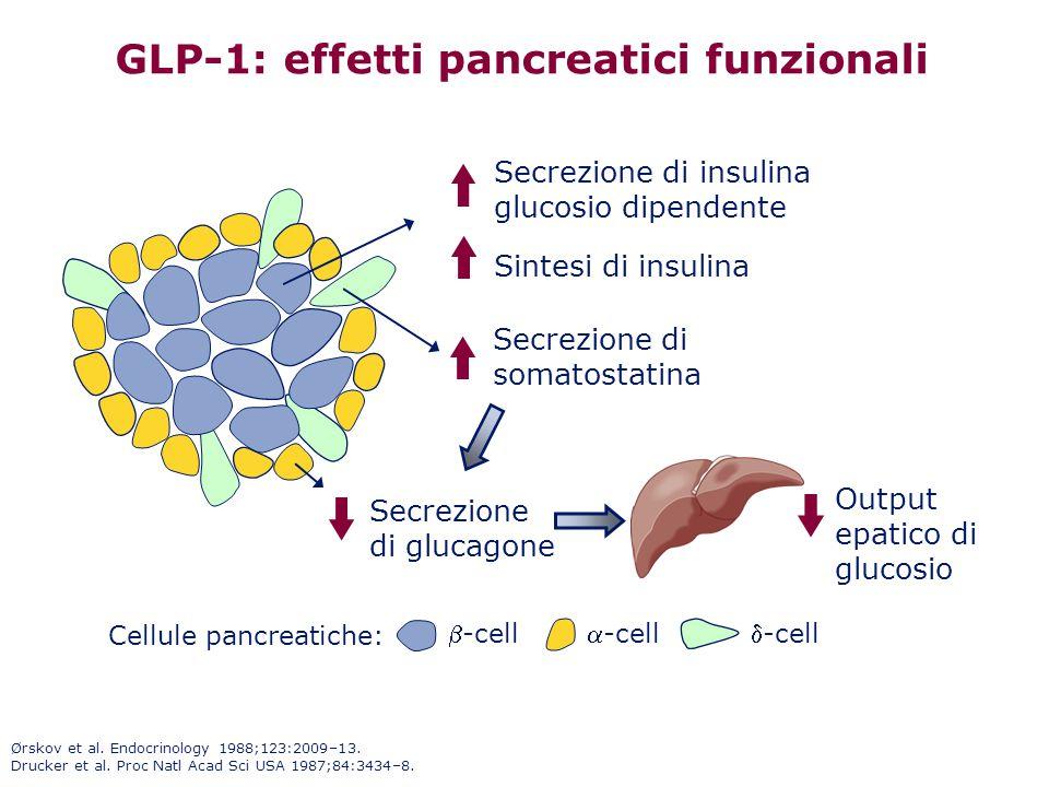 Ørskov et al. Endocrinology 1988;123:2009–13. Drucker et al. Proc Natl Acad Sci USA 1987;84:3434–8. GLP-1: effetti pancreatici funzionali -cell-cell
