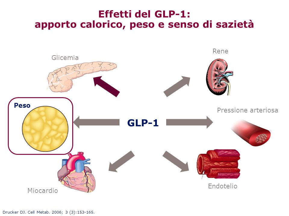Effetti del GLP-1: apporto calorico, peso e senso di sazietà Glicemia Peso Pressione arteriosa Miocardio Endotelio Rene GLP-1 Drucker DJ. Cell Metab.