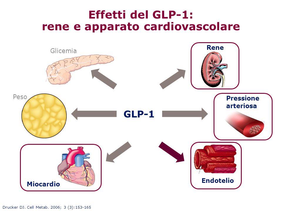 Effetti del GLP-1: rene e apparato cardiovascolare Glicemia Peso Pressione arteriosa Miocardio Endotelio Rene GLP-1 Drucker DJ. Cell Metab. 2006; 3 (3
