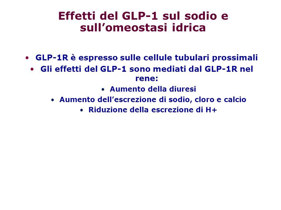 Effetti del GLP-1 sul sodio e sull'omeostasi idrica GLP-1R è espresso sulle cellule tubulari prossimali Gli effetti del GLP-1 sono mediati dal GLP-1R