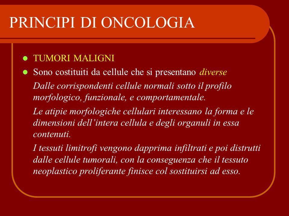 TUMORI MALIGNI Sono costituiti da cellule che si presentano diverse Dalle corrispondenti cellule normali sotto il profilo morfologico, funzionale, e c