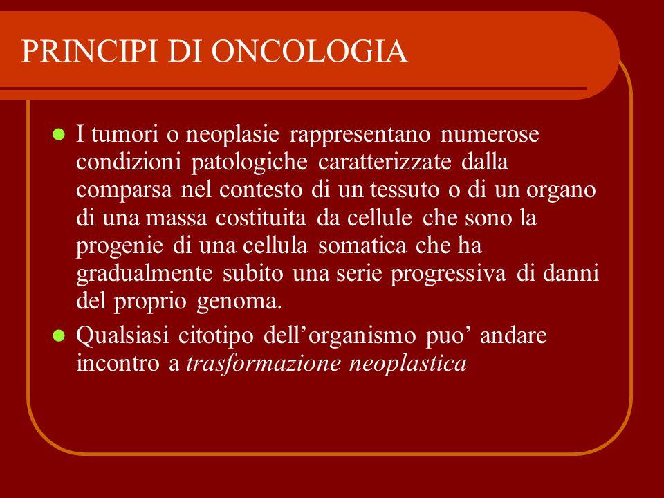 I tumori o neoplasie rappresentano numerose condizioni patologiche caratterizzate dalla comparsa nel contesto di un tessuto o di un organo di una mass