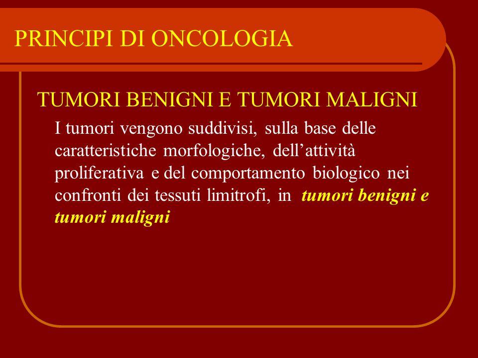 TUMORI BENIGNI E TUMORI MALIGNI I tumori vengono suddivisi, sulla base delle caratteristiche morfologiche, dell'attività proliferativa e del comportam