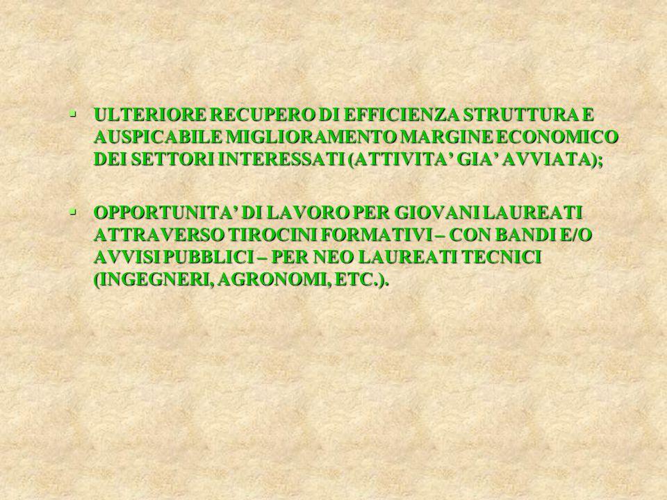  ULTERIORE RECUPERO DI EFFICIENZA STRUTTURA E AUSPICABILE MIGLIORAMENTO MARGINE ECONOMICO DEI SETTORI INTERESSATI (ATTIVITA' GIA' AVVIATA);  OPPORTU