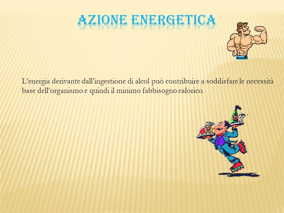 L'energia derivante dall'ingestione di alcol può contribuire a soddisfare le necessità base dell'organismo e quindi il minimo fabbisogno calorico.