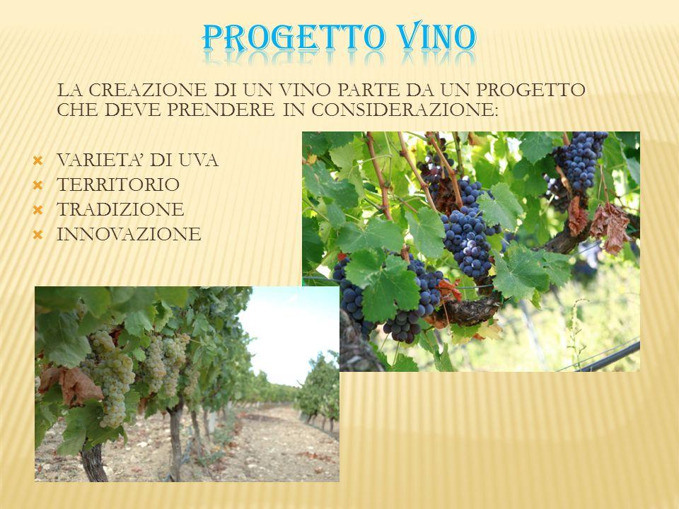 Nel vino si trovano oltre 50 acidi.