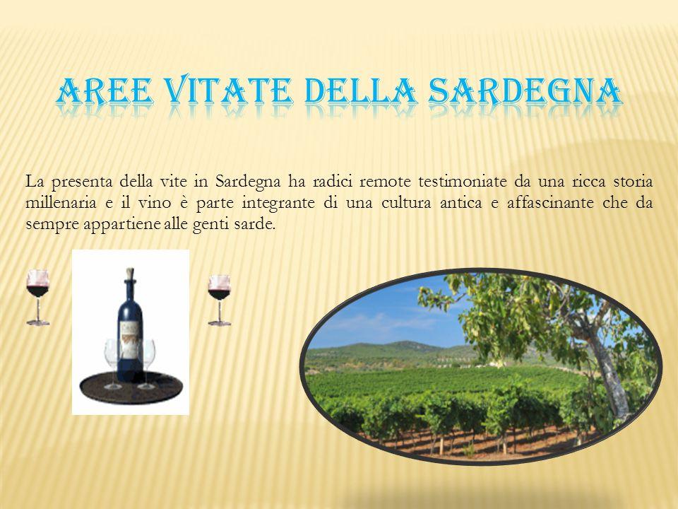 La presenta della vite in Sardegna ha radici remote testimoniate da una ricca storia millenaria e il vino è parte integrante di una cultura antica e a