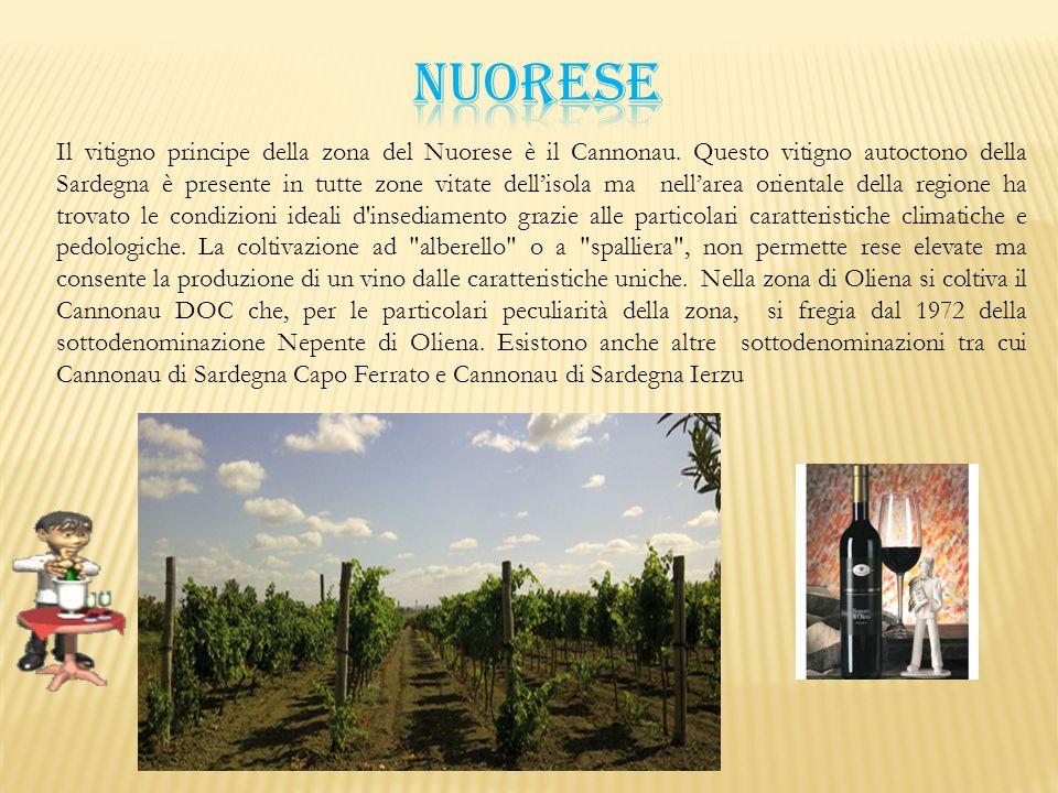 Il vitigno principe della zona del Nuorese è il Cannonau. Questo vitigno autoctono della Sardegna è presente in tutte zone vitate dell'isola ma nell'a
