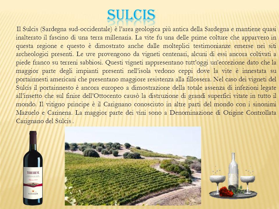 Il Sulcis (Sardegna sud-occidentale) è l'area geologica più antica della Sardegna e mantiene quasi inalterato il fascino di una terra millenaria. La v