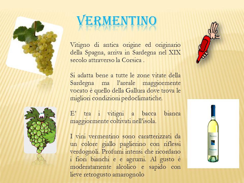 Vitigno di antica origine ed originario della Spagna, arriva in Sardegna nel XIX secolo attraverso la Corsica. Si adatta bene a tutte le zone vitate d