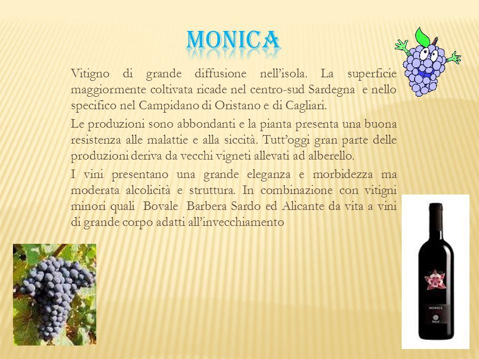 Vitigno di grande diffusione nell'isola. La superficie maggiormente coltivata ricade nel centro-sud Sardegna e nello specifico nel Campidano di Orista