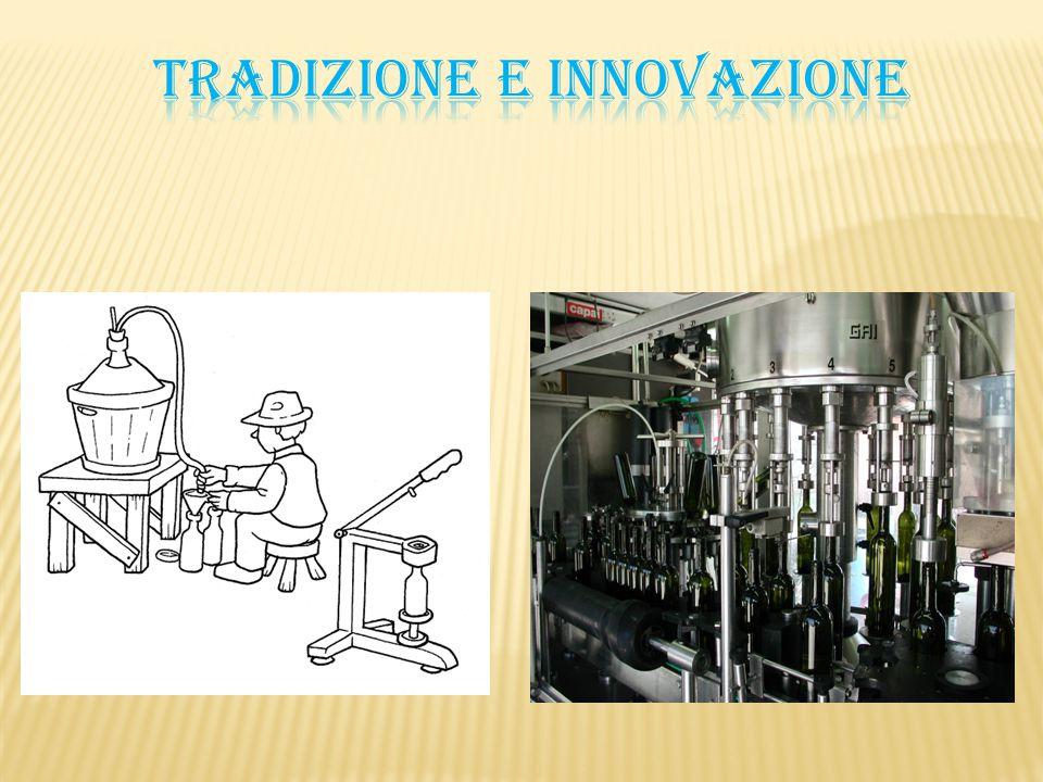 Il vino è il prodotto della fermentazione alcolica, in presenza o in assenza di vinacce, che viene operata dai lieviti (presenti sulla buccia dell acino).