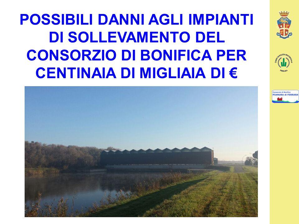 POSSIBILI DANNI AGLI IMPIANTI DI SOLLEVAMENTO DEL CONSORZIO DI BONIFICA PER CENTINAIA DI MIGLIAIA DI €