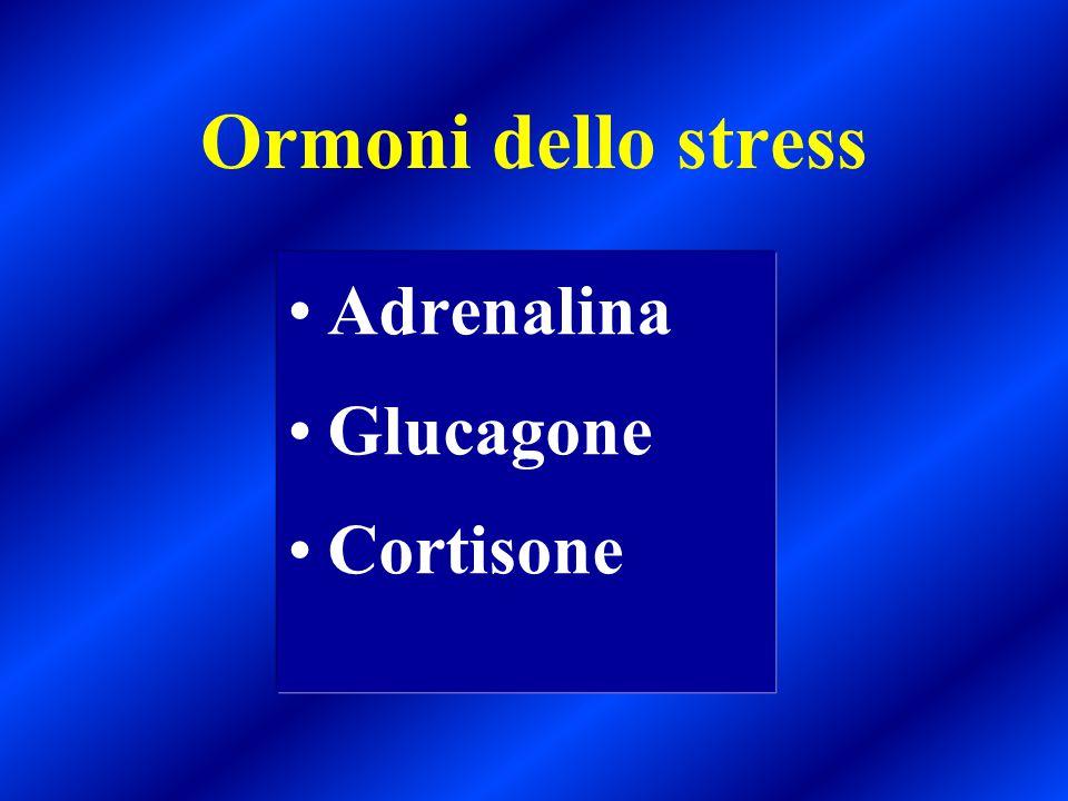 Ormoni dello stress Adrenalina Glucagone Cortisone