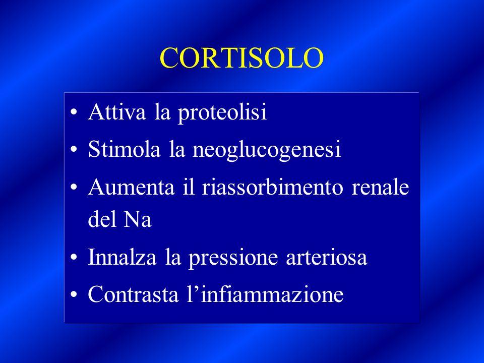 CORTISOLO Attiva la proteolisi Stimola la neoglucogenesi Aumenta il riassorbimento renale del Na Innalza la pressione arteriosa Contrasta l'infiammazi