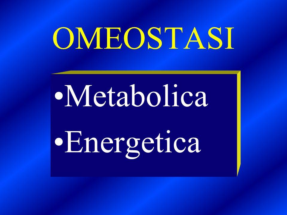 CORTISOLO Attiva la proteolisi Stimola la neoglucogenesi Aumenta il riassorbimento renale del Na Innalza la pressione arteriosa Contrasta l'infiammazione