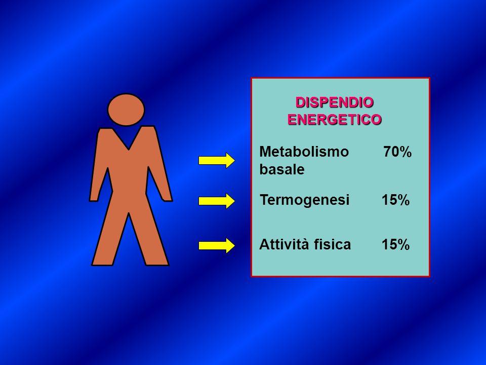 DISPENDIOENERGETICO Metabolismo 70% basale Attività fisica 15% Termogenesi 15%
