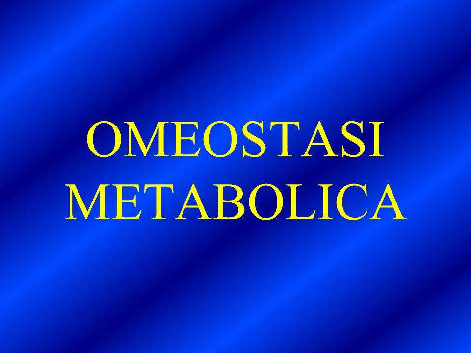 OMEOSTASI METABOLICA