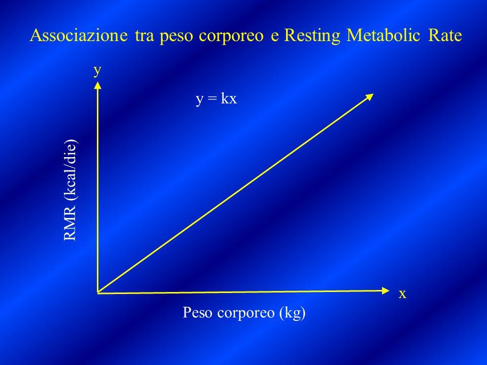 Peso corporeo (kg) RMR (kcal/die) y x y = kx Associazione tra peso corporeo e Resting Metabolic Rate