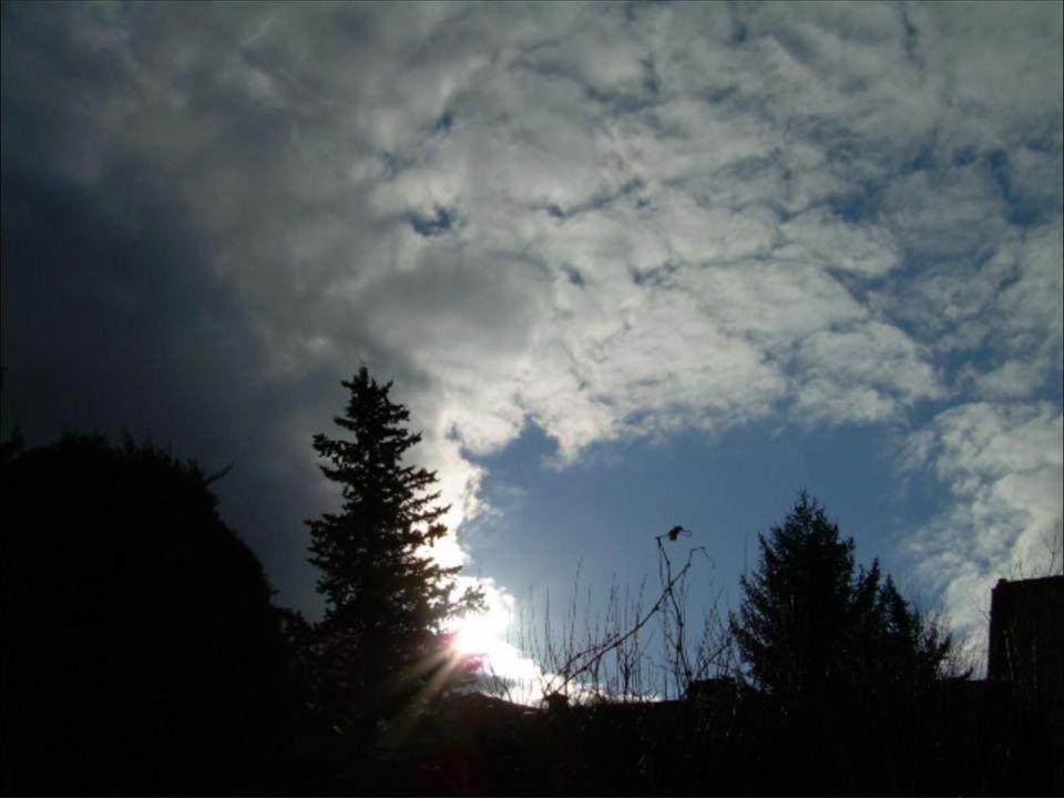 Nel primo chiarore del giorno, vestite di luce e silenzio, le cose riemergono dal buio com'era al principio del mondo…