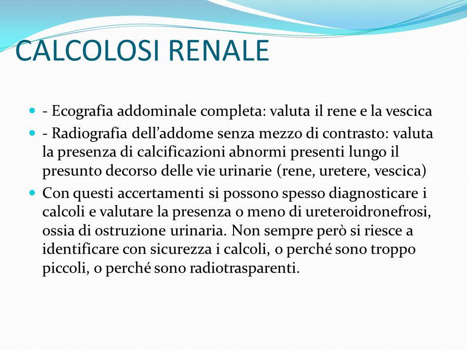 CALCOLOSI RENALE - Ecografia addominale completa: valuta il rene e la vescica - Radiografia dell'addome senza mezzo di contrasto: valuta la presenza d