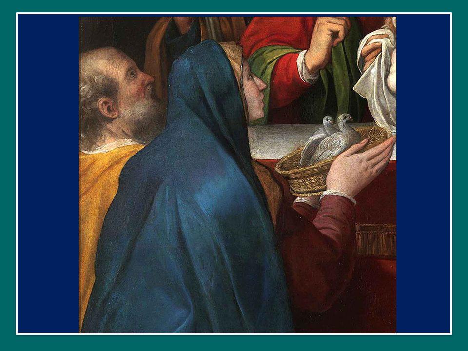 Papa Francesco ha introdotto la preghiera mariana dell' Angelus in Piazza San Pietro nella Festa della Santa Famiglia 28 dicembre 2014 Papa Francesco ha introdotto la preghiera mariana dell' Angelus in Piazza San Pietro nella Festa della Santa Famiglia 28 dicembre 2014