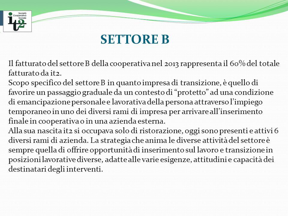SETTORE B Il fatturato del settore B della cooperativa nel 2013 rappresenta il 60% del totale fatturato da it2.
