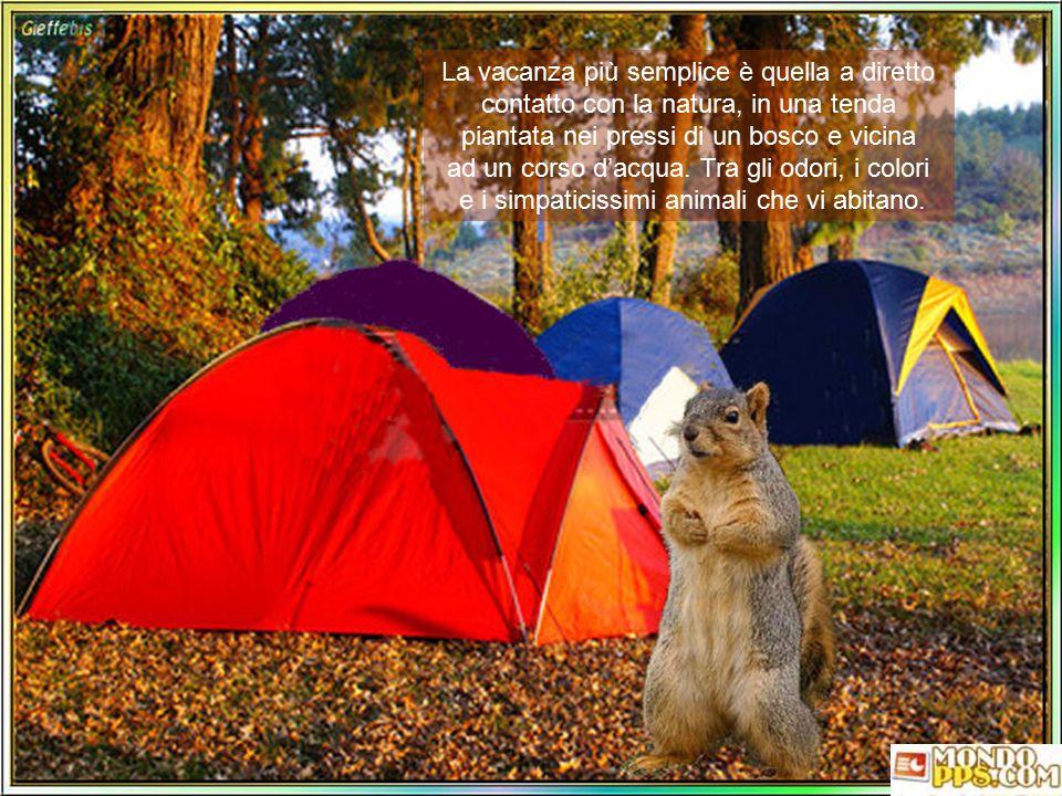 La vacanza più semplice è quella a diretto contatto con la natura, in una tenda piantata nei pressi di un bosco e vicina ad un corso d'acqua.