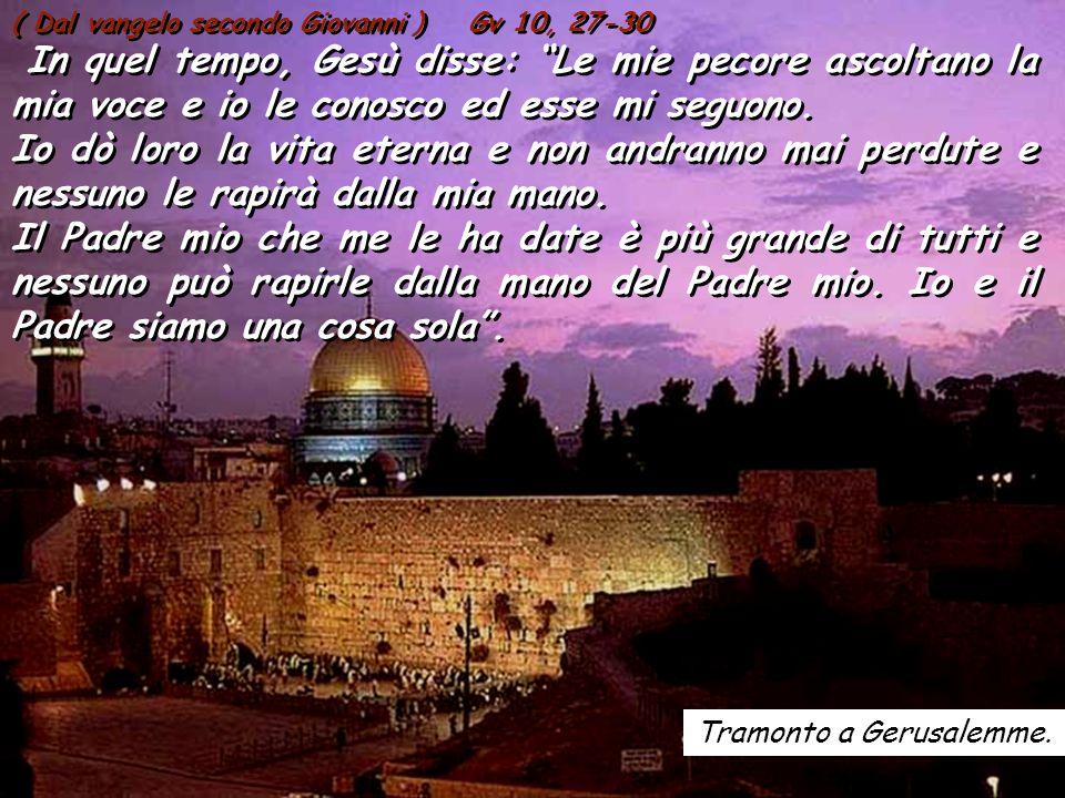 ALLELUIA Gv 10, 14 ALLELUIA Gv 10, 14 Io sono il buon pastore, dice il Signore; conosco le mie pecore, e le mie pecore conoscono me.