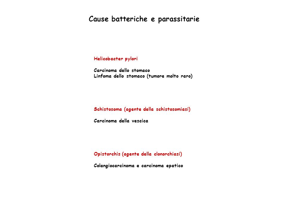 Cause batteriche e parassitarie Helicobacter pylori Carcinoma dello stomaco Linfoma dello stomaco (tumore molto raro) Schistosoma (agente della schistosomiasi) Carcinoma della vescica Opistorchis (agente della clonorchiasi) Colangiocarcinoma e carcinoma epatico