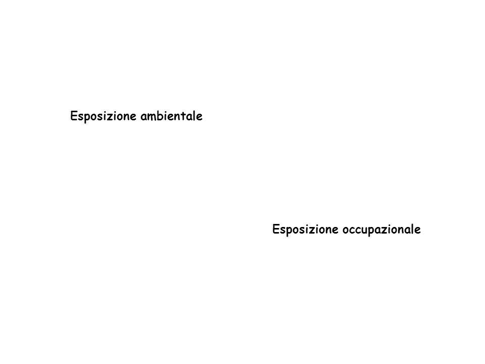 Esposizione ambientale Esposizione occupazionale