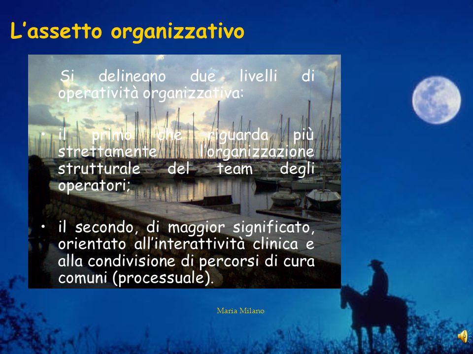 Maria Milano L'assetto organizzativo Si delineano due livelli di operatività organizzativa: il primo che riguarda più strettamente l'organizzazione strutturale del team degli operatori; il secondo, di maggior significato, orientato all'interattività clinica e alla condivisione di percorsi di cura comuni (processuale).