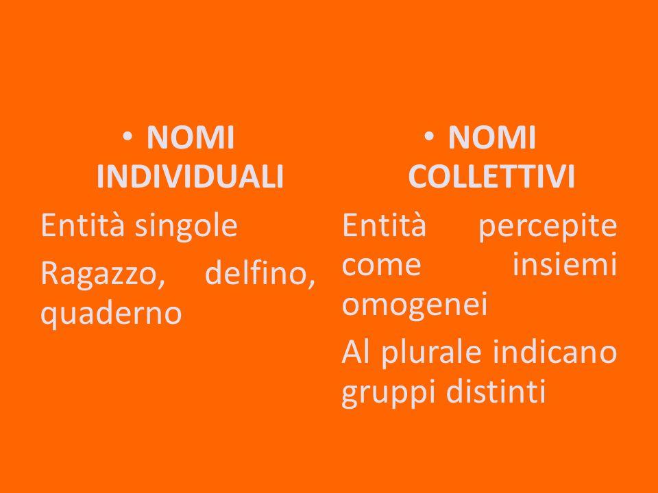 NOMI INDIVIDUALI Entità singole Ragazzo, delfino, quaderno NOMI COLLETTIVI Entità percepite come insiemi omogenei Al plurale indicano gruppi distinti
