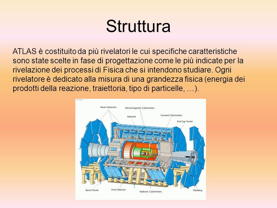 Struttura ATLAS è costituito da più rivelatori le cui specifiche caratteristiche sono state scelte in fase di progettazione come le più indicate per l