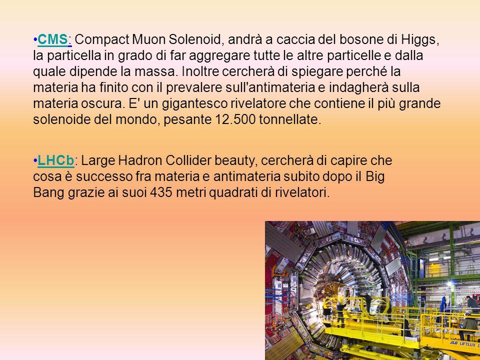 CMS: Compact Muon Solenoid, andrà a caccia del bosone di Higgs, la particella in grado di far aggregare tutte le altre particelle e dalla quale dipend