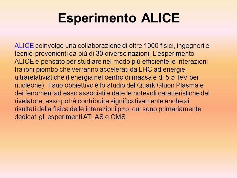 Esperimento ALICE ALICE coinvolge una collaborazione di oltre 1000 fisici, ingegneri e tecnici provenienti da più di 30 diverse nazioni. L'esperimento