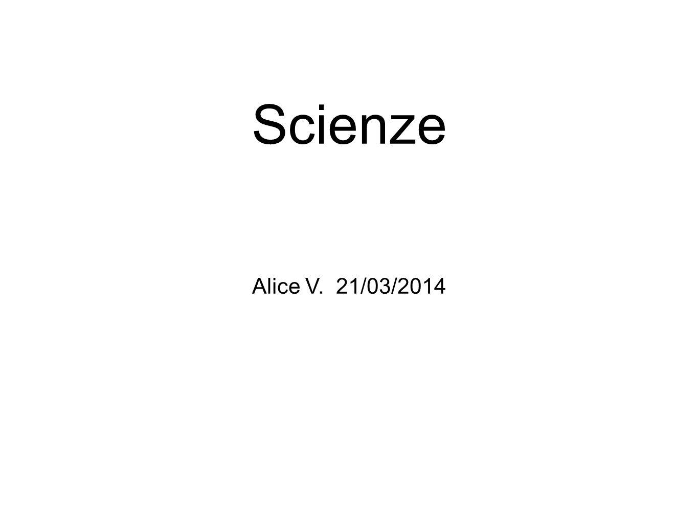 Alice V. Grazie a tutti per l attenzione, e spero che il mio lavoro vi sia piaciuto!