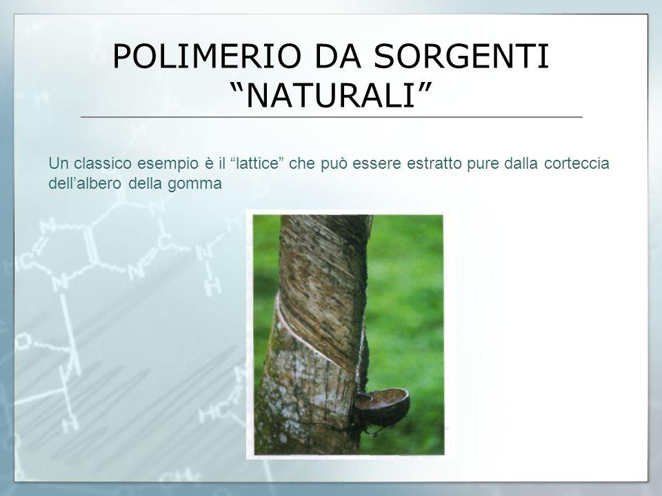 POLIMERIO DA SORGENTI NATURALI Un classico esempio è il lattice che può essere estratto pure dalla corteccia dell'albero della gomma