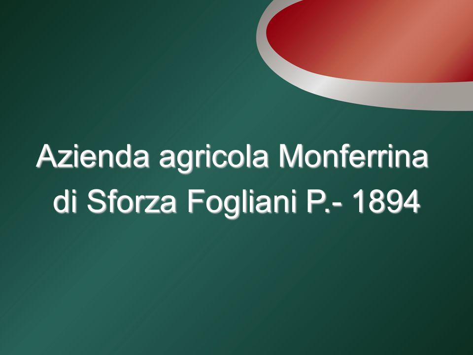 Azienda agricola Monferrina di Sforza Fogliani P.- 1894