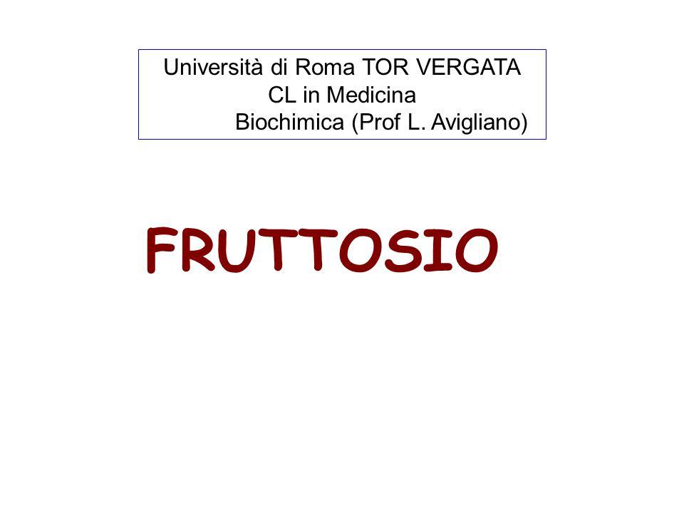 FRUTTOSIO Università di Roma TOR VERGATA CL in Medicina Biochimica (Prof L. Avigliano)